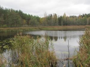 1-е Змеиное озеро