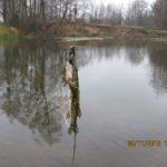 Рыбалка 3.11.13