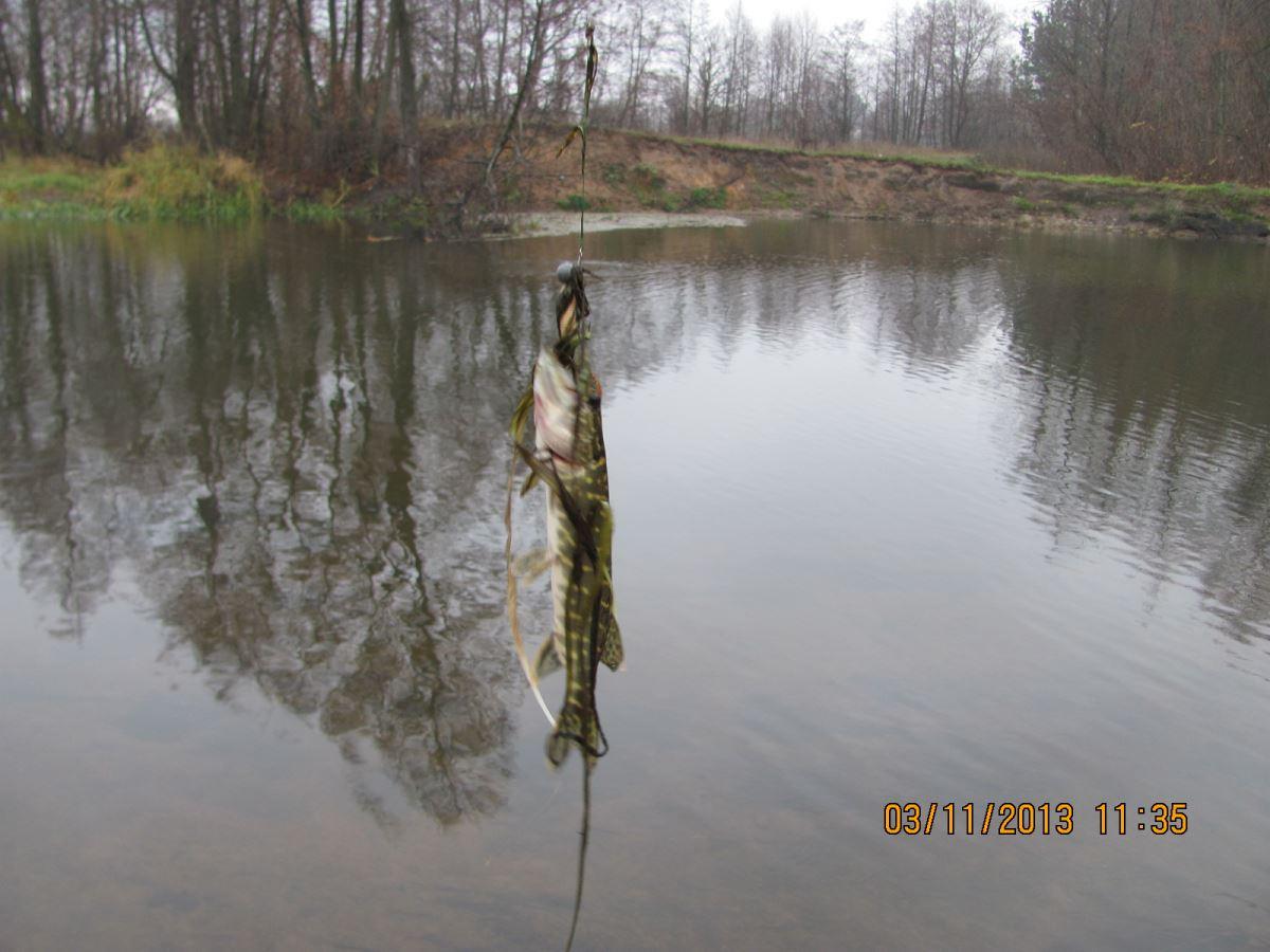 лепель рыбалка