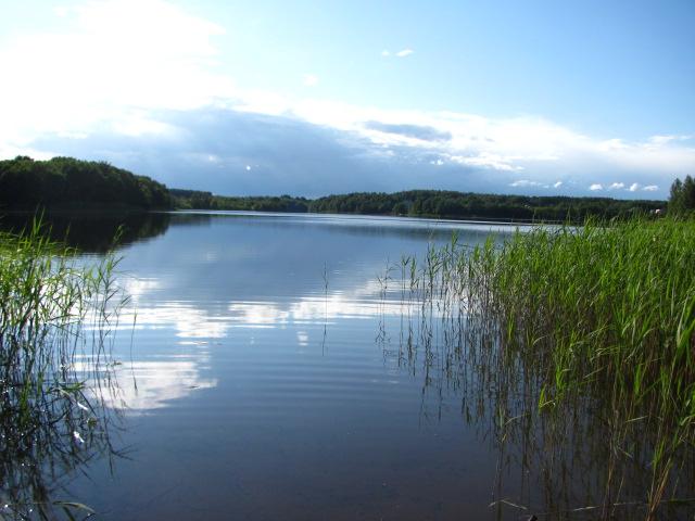 озеро для язя
