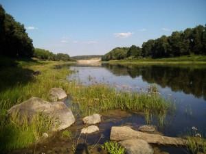 неплохая река для ловли болонским способом