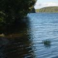 Дубровское водохранилище