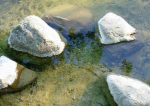 вода на оз. Мядель