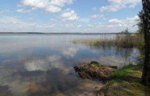 Вишневское озеро Вилейский район