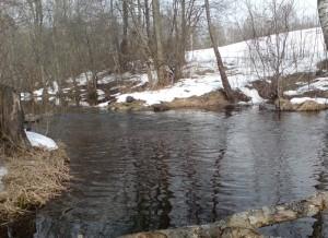 река Зеха в марте