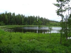 озеро Змеиное 3